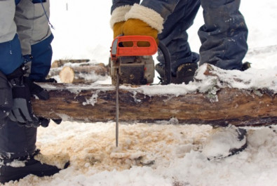 Chain Saw Felling
